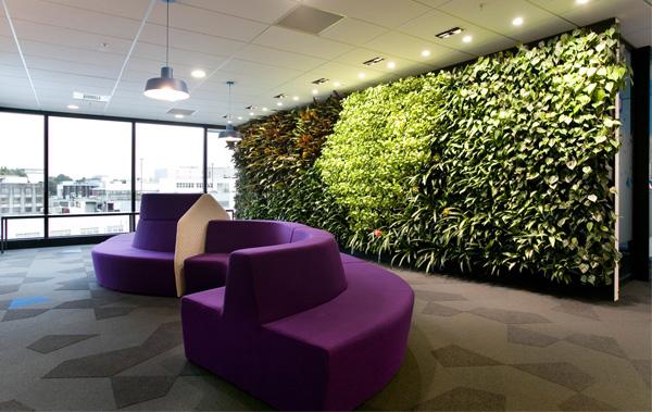 办公室植物墙,企业植物墙,企业垂直绿化