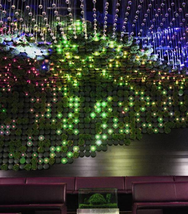 温室夜总会植物墙  拥抱大自然