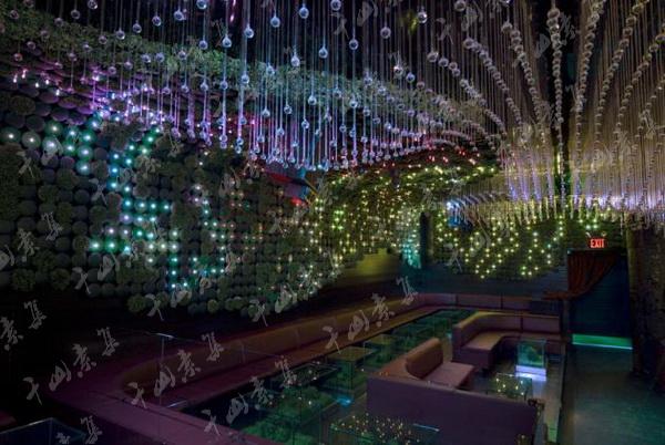 娱乐场所植物墙,室内植物墙,植物墙设计