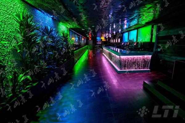 俱乐部植物墙,室内植物墙,植物墙设计