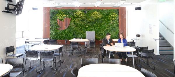 植物墙装饰,植物墙设计